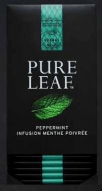 Infusion Pure Leaf Menthe Poivrée x20
